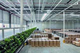 What's Inside Counts – Lifting Logistics Space From Functional to Humancentric Design